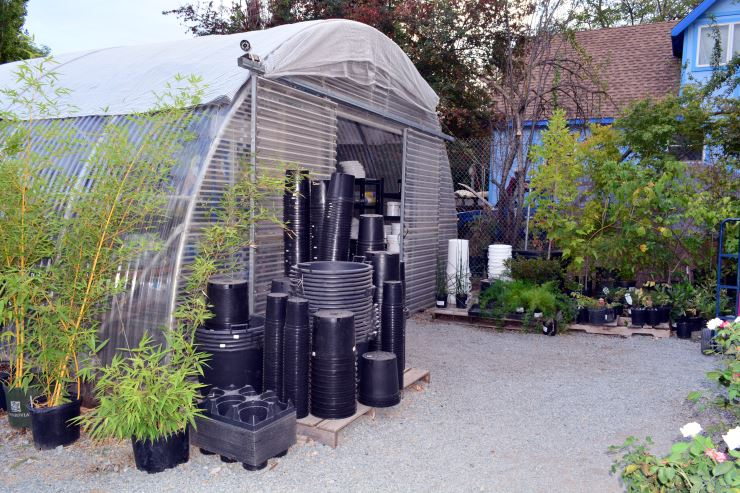 Attrayant ... Greenhouse And Nursery; Fiskars And Chikamasa Pruning Shears; Helpful  Staff At Sweetland Garden Supply ...