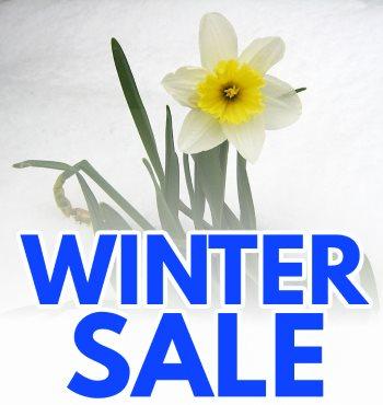 winter sale at sweetland garden mercantile