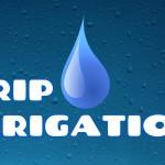 drip irrigation class at sweetland garden supply